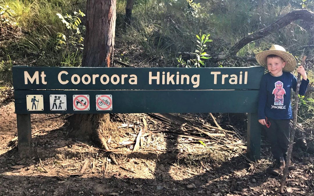 Hiking Mount Cooroora with Kids