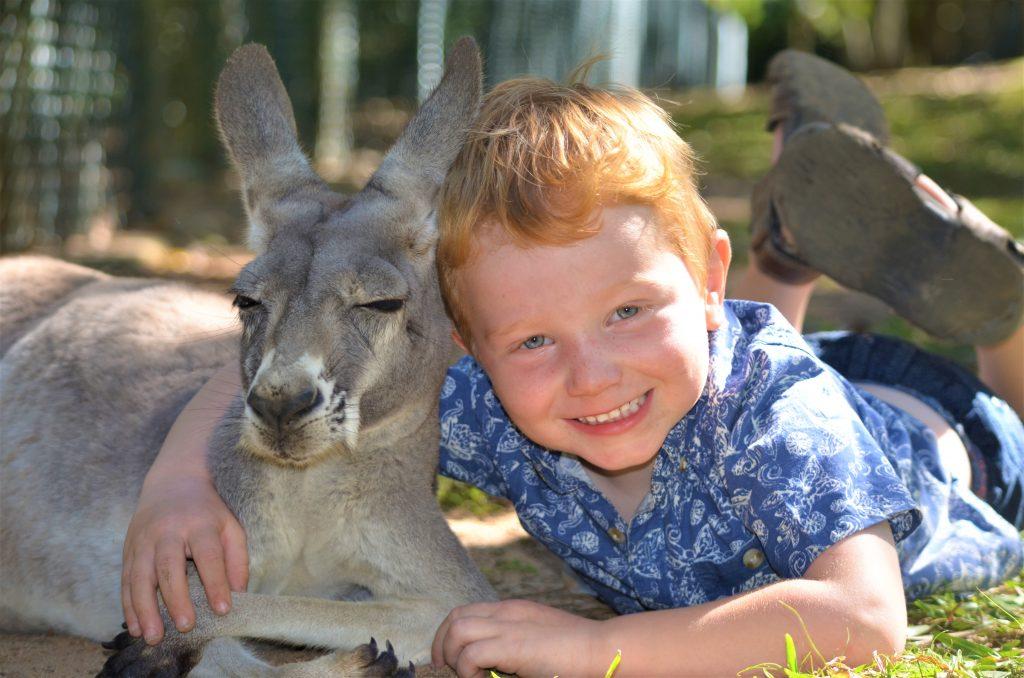 Sam cuddling a koala at australia zoo sunshine coast