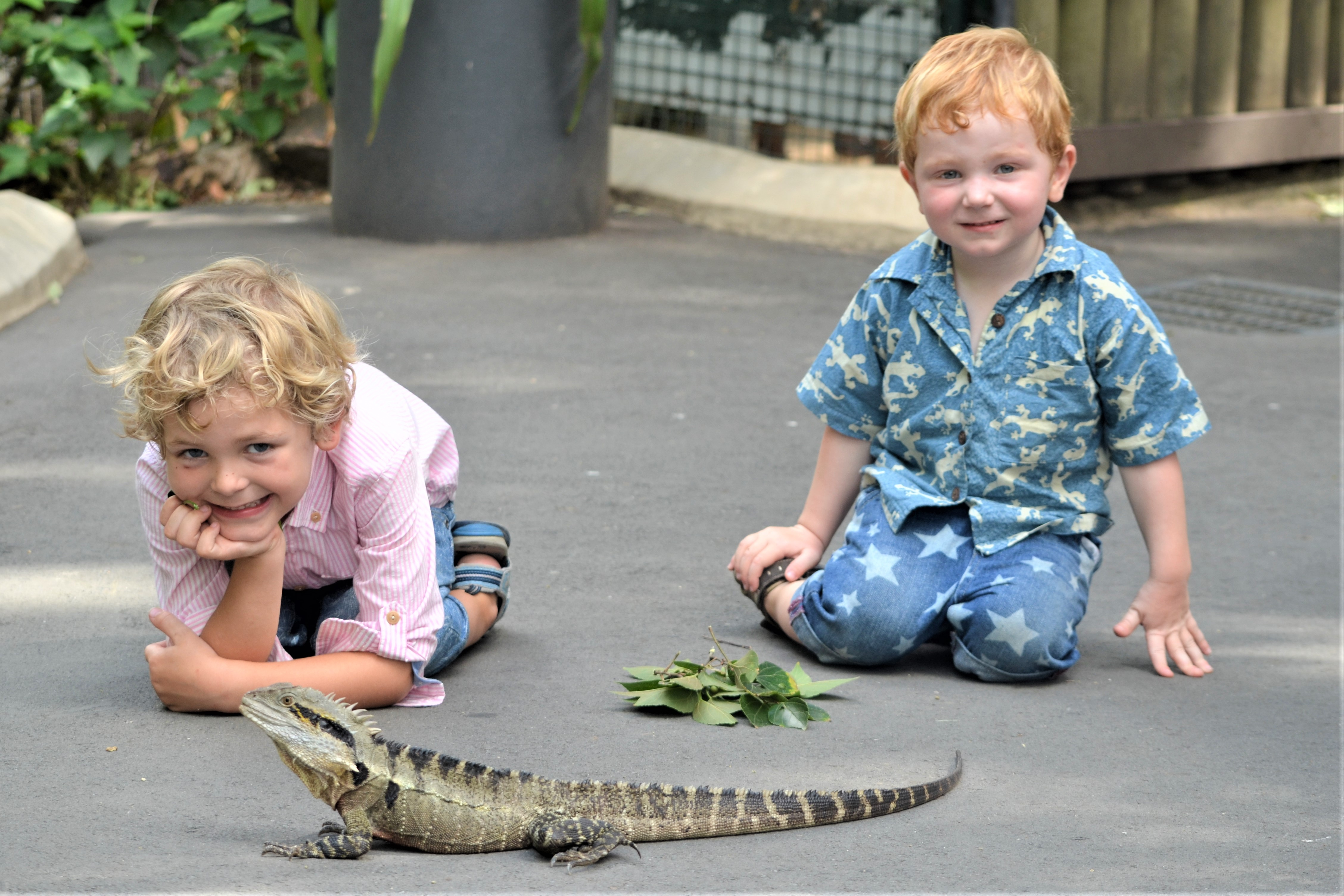 Australia Zoo 10 Things We Love About You One Life Lets Live It